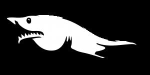 shark-305004